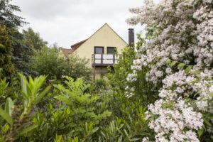 Vorne viele blühende Büsche, im Hintergrund das Haus